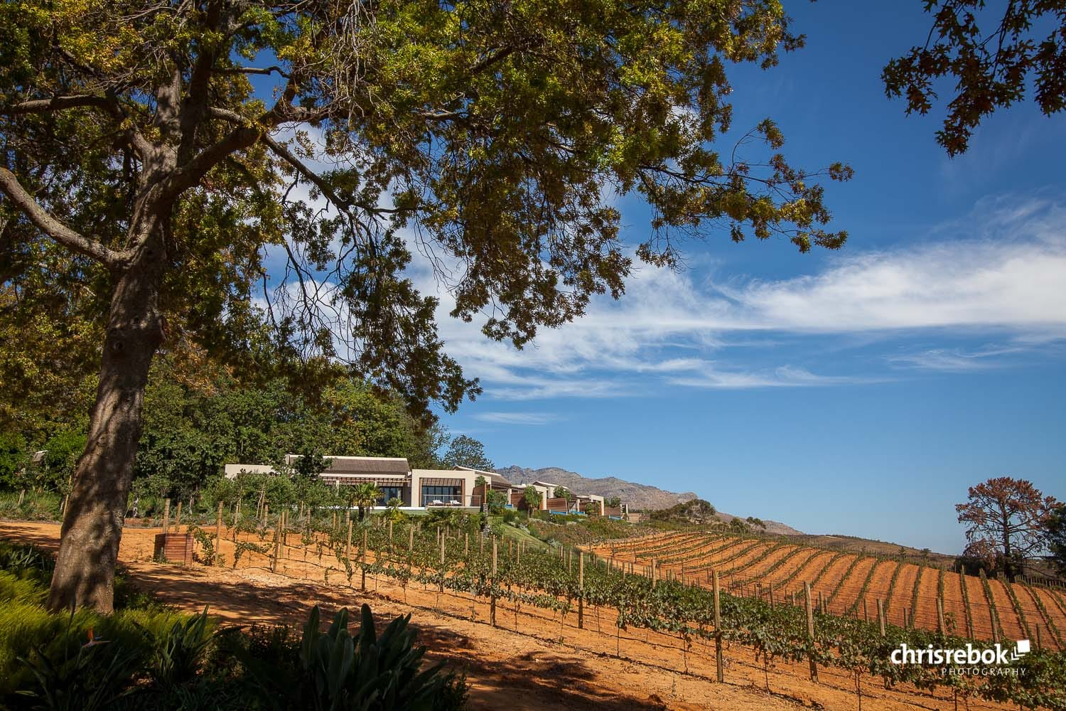 Delair Graff Wine Estate, Stellenbosch, South Africa